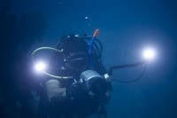 Summer Diving In Red Sea