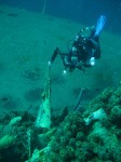Bonaire Dives On The Hilma Hooker and Windsock